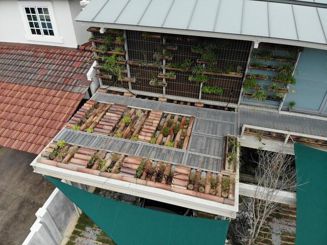 Ngôi nhà được biến tấu bằng vườn treo thay vì mặt tiền - Ảnh 2.