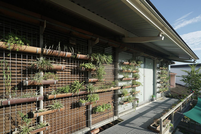 Ngôi nhà được biến tấu bằng vườn treo thay vì mặt tiền - Ảnh 14.