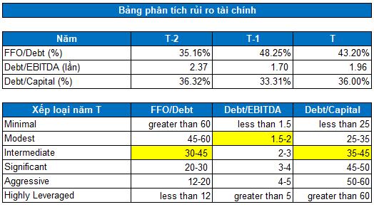 SNZ - Tiềm năng tăng giá - Phân tích rủi ro tài chính