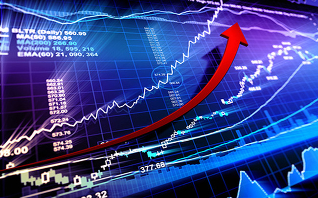 Phương án phát hành cổ phiếu trả cổ tức năm 2020 của HDG, TNA