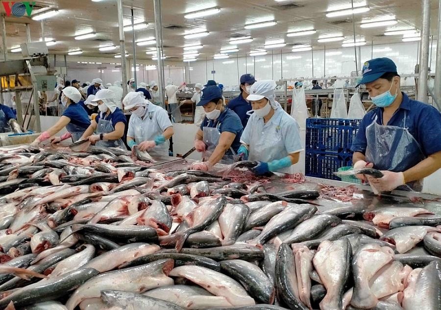 Kim ngạch xuất khẩu nông, lâm, thủy sản 9 tháng năm 2021
